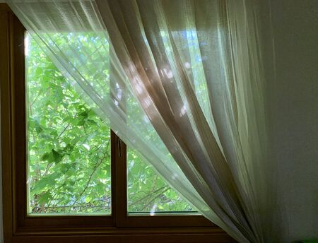 Sunny spring outside the window. Window in the house on a background of green plants. The sun's rays penetrate the house through the windows.