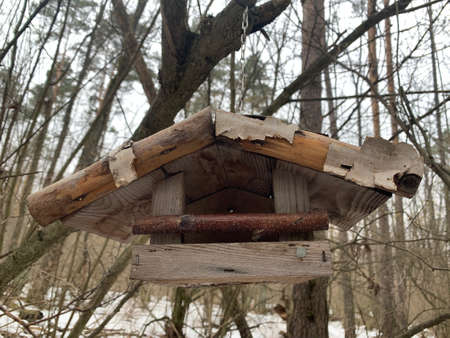 Feeder for winter feeding of birds. Birdhouse on a tree for squirrels and animals. Homemade bird house in the winter forest.