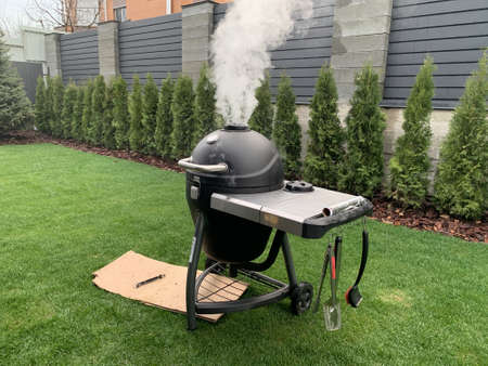 Charcoal grill in the backyard. Smoke from the barbecue during a picnic. We cook meat and fish on a portable grill. Фото со стока