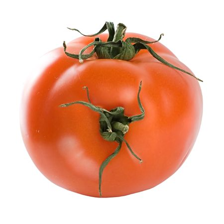 A tomato hybrid made of two tomatoes. Isolated on a white background. Stock Photo