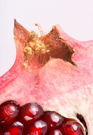 A fragment of a pomegranate: seeds and fruit-stalk close-up. Stock Photo