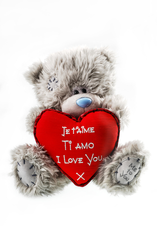 teddy bear for valentines day isolated whate background