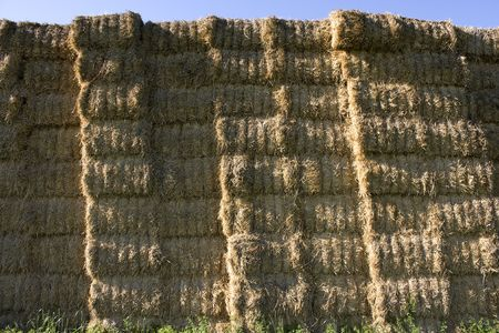 Pile of straw bales in the field
