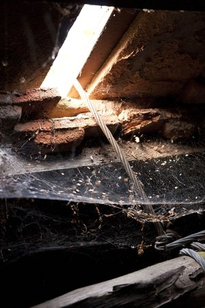spiders web: Spider web at a dark abandoned attic