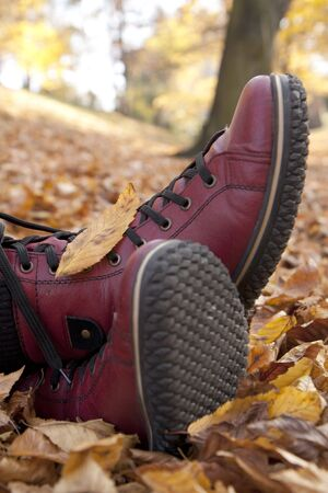 Woman feet in boots in leaves - autumn still life