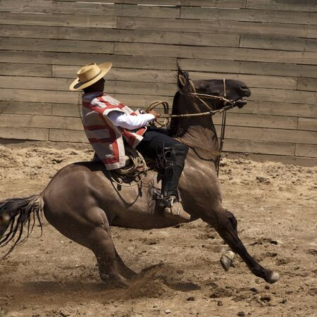 Chilean rodeo - traditional sport of horsemen Reklamní fotografie