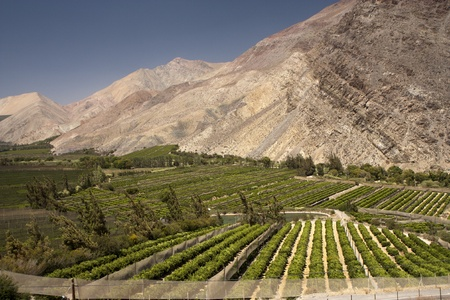 Elqui valley, Chile - fertile valley in inhospitable mountains