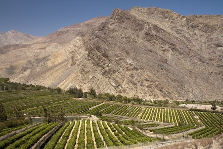 chile: Elqui valley, Chile - fertile valley in inhospitable mountains