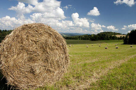 Straw bales in the country