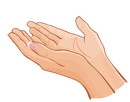 vector female hands carefully holding something isolated on white Illustration