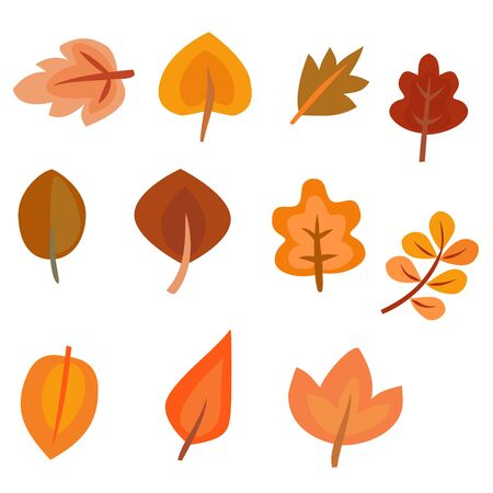 set of colorful autumn leaves isolated on white 矢量图像
