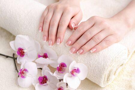 Uñas con manicura francesa. Hermosas manos femeninas con una orquídea. Piel y uñas bien cuidadas. Concepto de belleza y salud. Foto de archivo