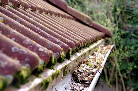 조밀 한 이끼와 청소가 필요한 나뭇잎이있는 거터가있는 더러운 지붕