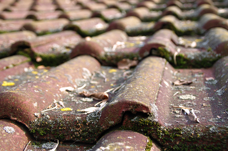 requiring: Dirty roof tiles with dense moss requiring cleaning