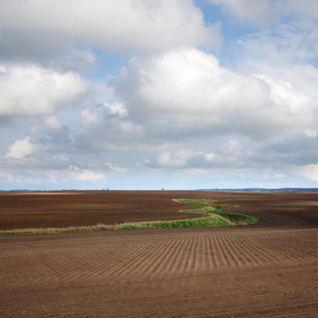 Meandering stream across plowing field with cloudy sky in background. Typical polish landscape. 版權商用圖片