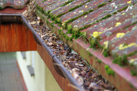 Cleaning dirty gutter from moss and leaves. Building with unclean tile roof after winter. Spring cleaning.