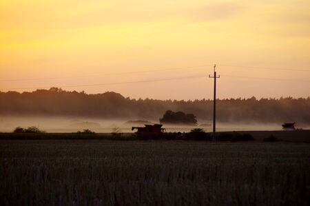 Silhouettes of working agricultural machinery during the harvest season. Harvester combine in a field at sunset. August rural scene.