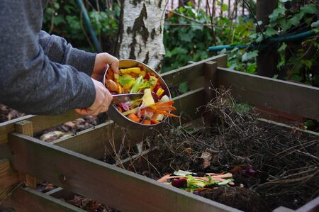 Ecology compost supply - kitchen waste recycling in backyard composter. The man throws leftover vegetables from the cutting board. Environmentally friendly lifestyle. Imagens