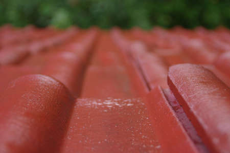 Wet tiles on the roof. Red cover the house during the rain.