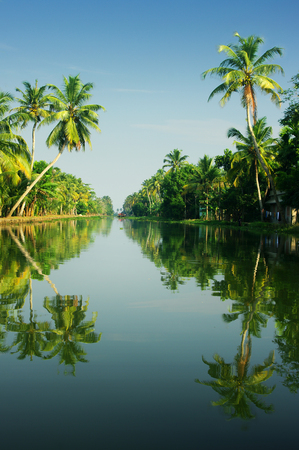 allepey: tropical landscape of Kerala, India Stock Photo