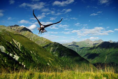 aigle: chasse aigle