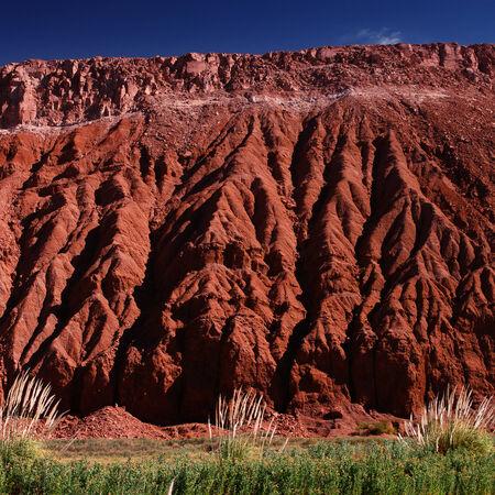 atacama: Atacama desert
