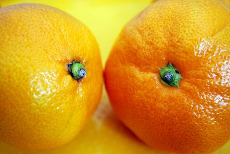 Two delisious mandarins looks like a sweet fruit couple photo