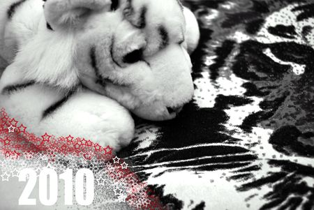 2010 Year of the White Tiger, Background with Furry Little Tiger Toy over Tiger Face Texture photo