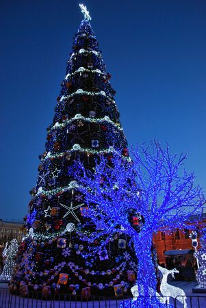 Main Christmas Tree and Ice Decorations on the Square of Freedom in the Kharkiv City, Ukraine Stock Photo