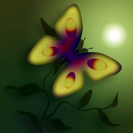 foggy: Butterfly on the flower in the foggy morning digital illustration Stock Photo