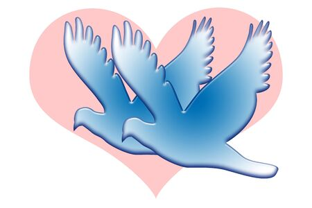 Blue romantic love doves and pink heart isolated over white background photo