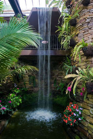 conservatory: A flowery waterfall inside a conservatory Stock Photo