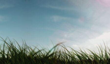 Background of CG landscape
