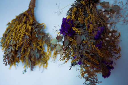 Mimoza and Sturtis Dried Flower Swag