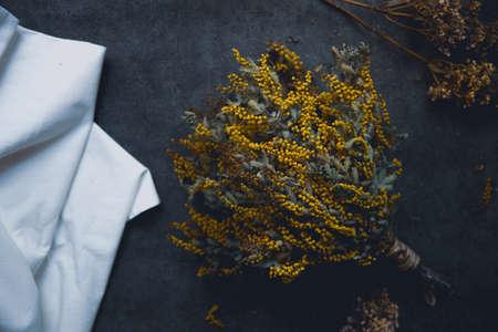 Mimoza Dried Flower Standard-Bild