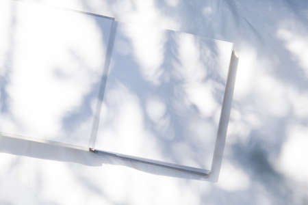 a book placed in white fabric with natural light and plant shadows