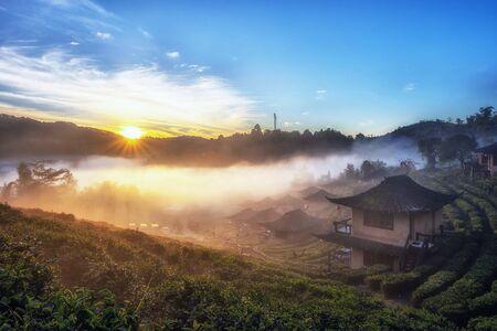 Sunrise at Lee wine Rak Thai, Ban Rak Thai, Mae Hong Son Province, Northern Thailand. 写真素材