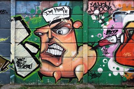 graffiti kunst in Novi Sad Servië 7