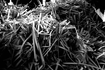 echte wereld prullenbak met riemen papier in zwart-wit