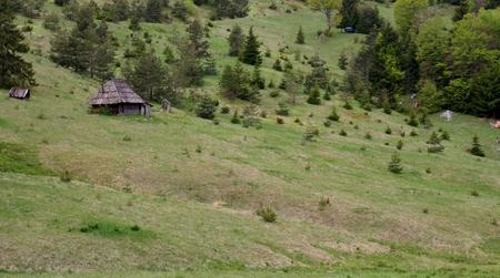 houten huis op de heuvel
