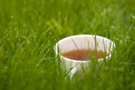 garden lawn: cup of tea on the grass lawn. with copyspace Stock Photo