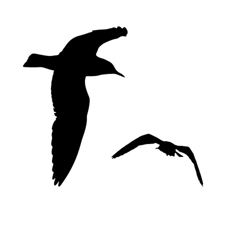Set - seagull silhouette on white background collection Illustration