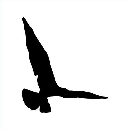 Flying Seagull Bird black silhouette isolated on white background