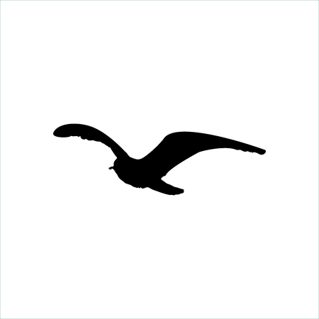 Flying Seagull Bird black silhouette isolated on white background.
