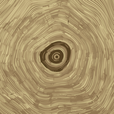annual ring annual ring: Cross section of tree stump background texture,