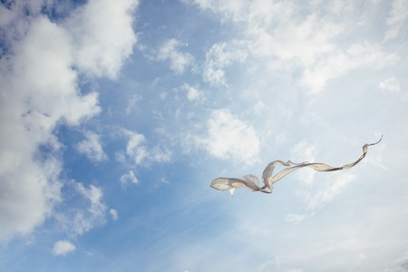 White kite flying against the blue sky full of clouds. Horizontal image