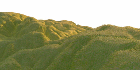Green grass hills lit by warm sunlight with the white background aerial top view from drone or plane. 3d illustration render.