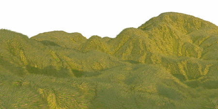 Green grass hills lit by warm sunlight with the white background aerial top view from drone or plane. Copyspace for your text. 3d illustration render