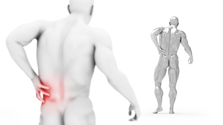 Male torso, pain in the back isolated on white background. 3d render illustration. Medical care concept