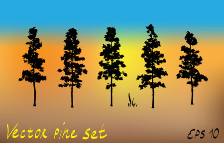 Pacific northwest pine old growth evergreen tree silhouette set collection.